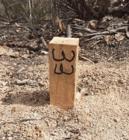 No a la MAT Selva denuncia treballs irregulars al polèmic Ramal de la Mat a la Selva