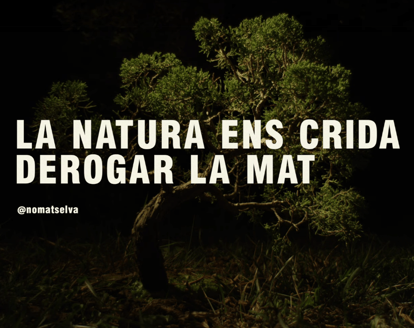 VIDEO_ART: La MAT, pena de mort pel bosc